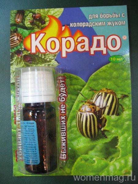 Применение препарата корадо от колорадского жука
