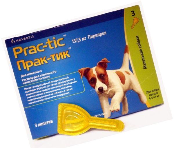Практик капли для собак: эффективное средство от блох, вшей и клещей