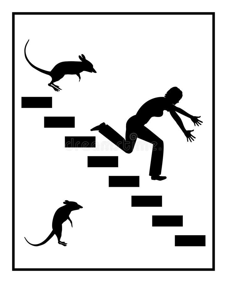 Мусофобия (musophobia): боязнь мышей и крыс