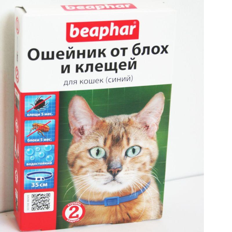 Ошейники от блох для кошек: обзор самых популярных со средними ценами, а так же плюсы и минусы использования русский фермер