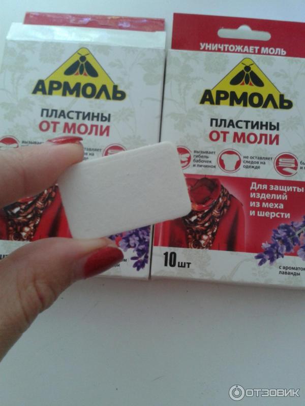 Как избавиться от моли в доме навсегда – womanistka.ru