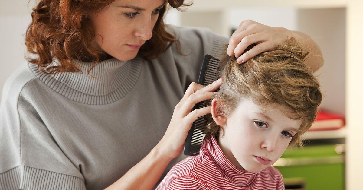 Эффективные способы выведения вшей у детей в домашних условиях. как вывести вшей у ребенка
