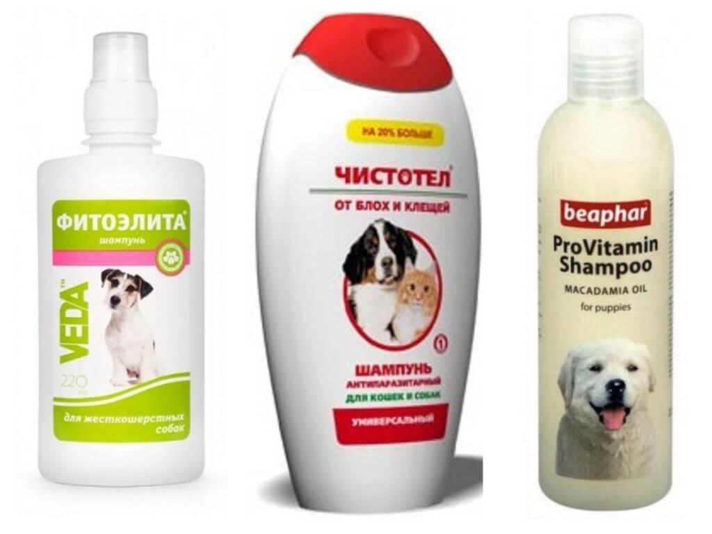 Шампунь от блох для собак: когда и как использовать средство, обзор популярных марок, отзывы об их эффективности
