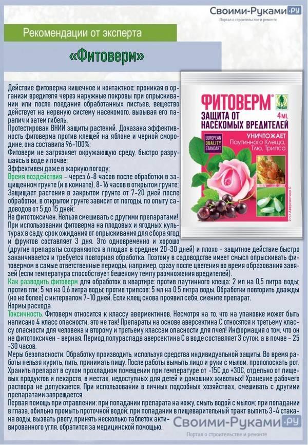 Фитоверм: действие, использование для комнатных, садовых и огородных растений