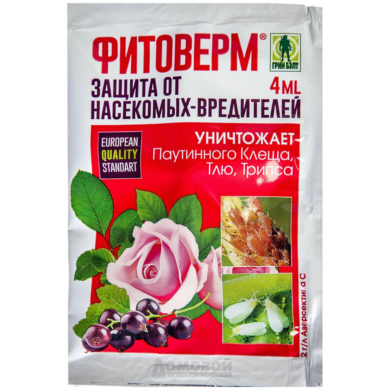 Фитоверм: применение и отзывы, инструкция как разводить и обрабатывать растения от долгоносика, клеща, огурцы, клубнику, капусту, комнатные