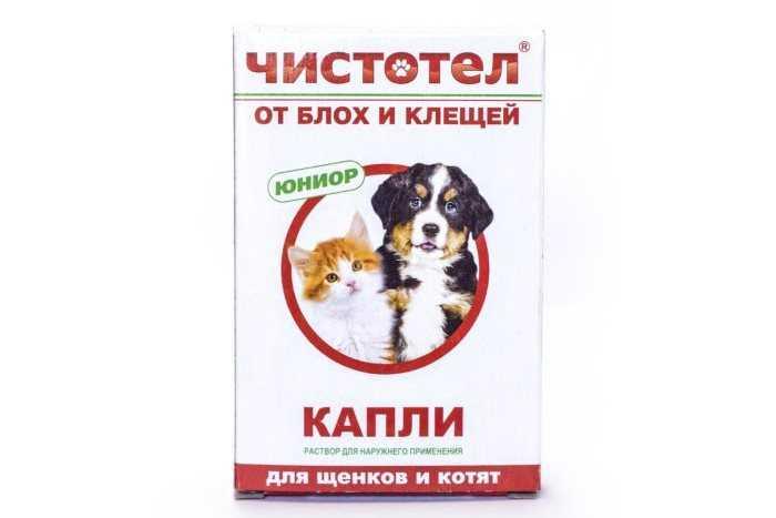 Капли от блох и клещей «чистотел» для котят и взрослых кошек: инструкция по применению