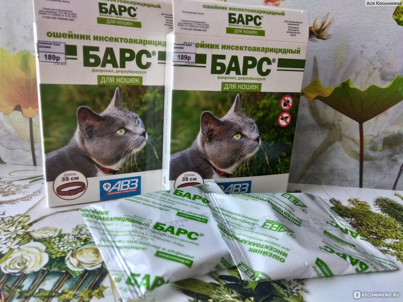 Барс от клещей и блох для собак и кошек (капли, спрей, ошейник) - инструкция по применению и отзывы | comp-plus.ru