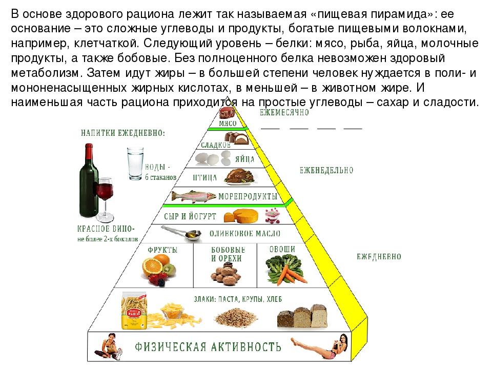 Что едят хомяки в домашних условиях: список продуктов которые можно и нельзя