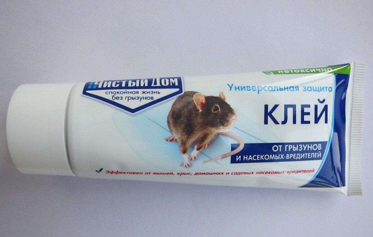 Клей – уникальное средство для уничтожения домовых грызунов-вредителей — ботаничка.ru