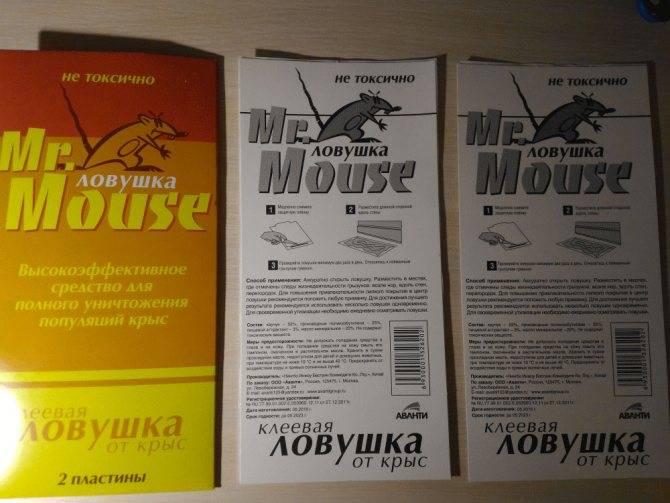 Клеевые ловушки для грызунов, где их расставить и какую выбрать - обзор производителей