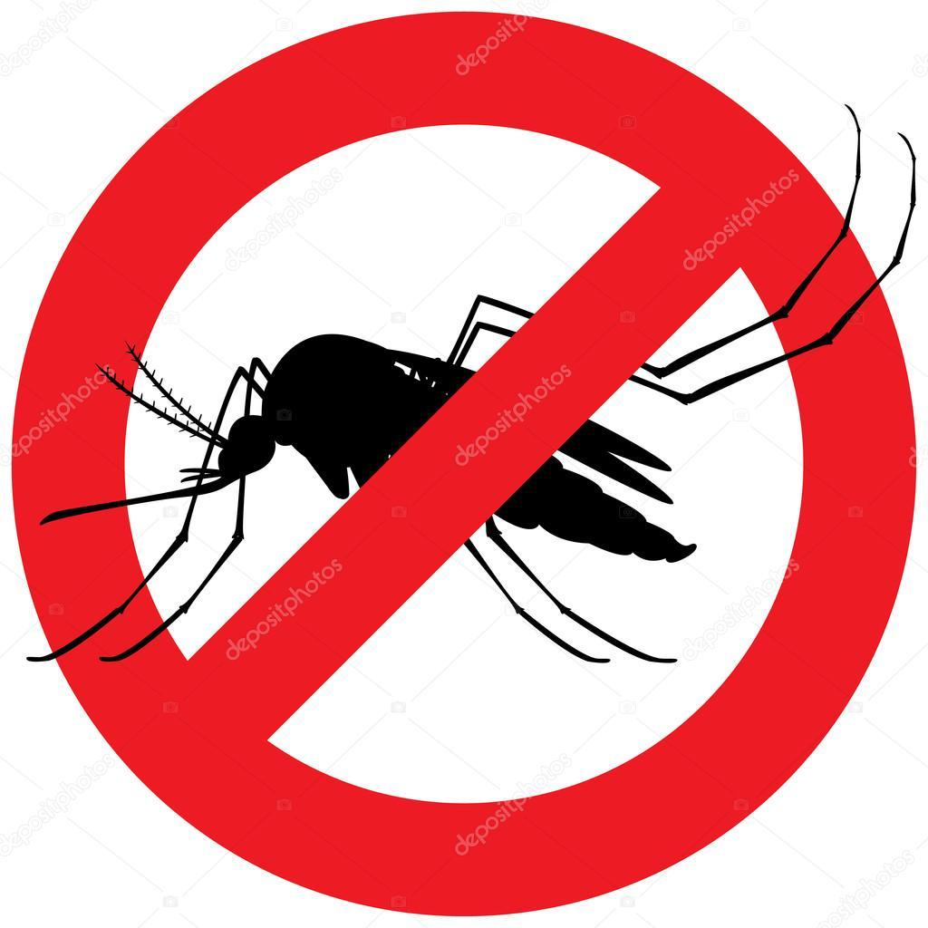 К чему снится комар во сне — по 90 сонникам! если видишь во сне комар что значит?