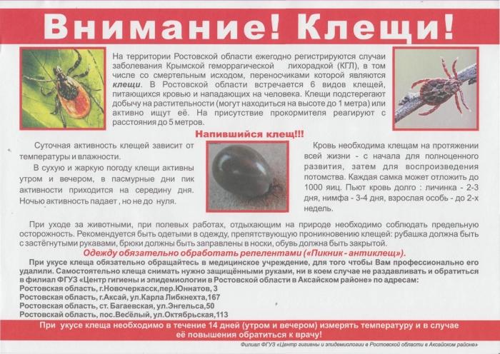 ᐉ сонник клещ - x-sonnik.ru