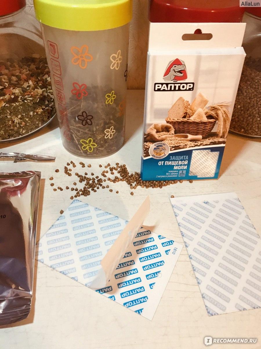 Как избавиться от пищевой моли – подборка методов
