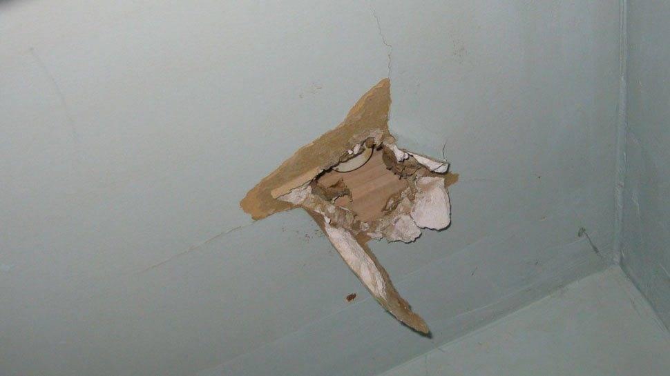Что делать, если под полотном натяжного потолка завелась мышь? могут ли мыши прогрызть натяжной потолок: как предотвратить появление вредителя