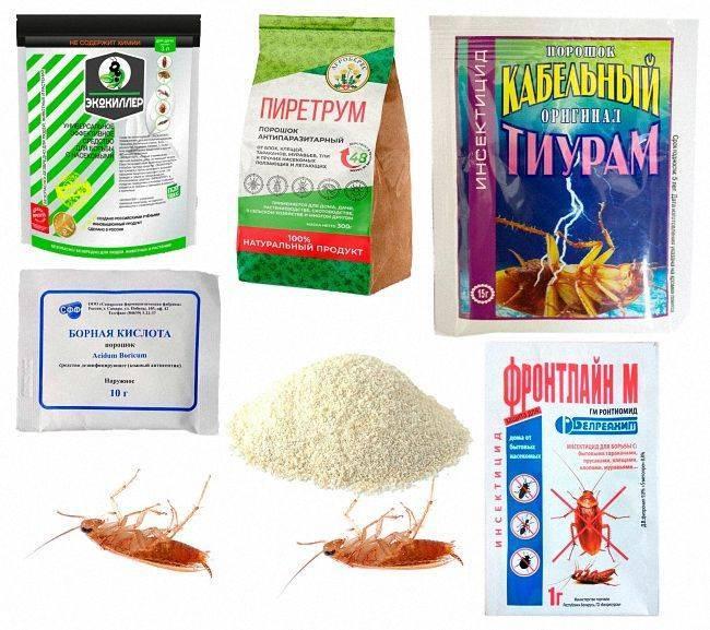 15 профессиональных средств от тараканов