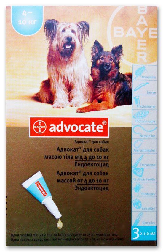 Адвокат капли для собак: инструкция по применению