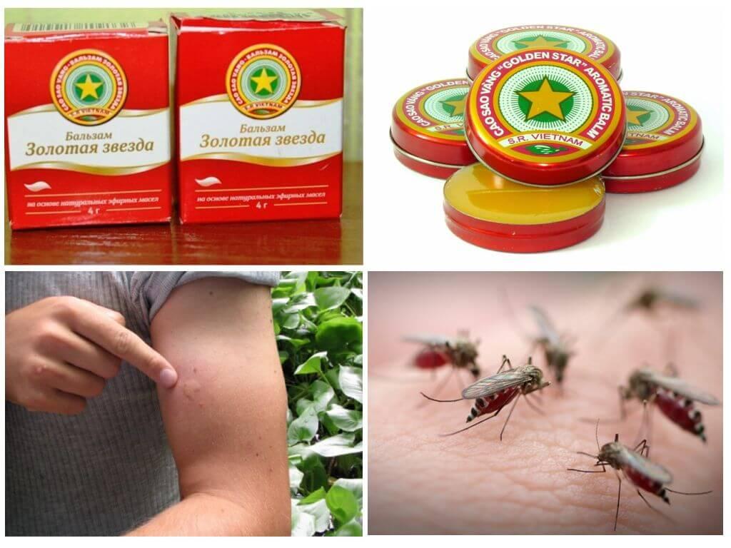 Народные средства от укусов комаров: какие наиболее эффективны? народные средства от укусов комаров: какие наиболее эффективны?
