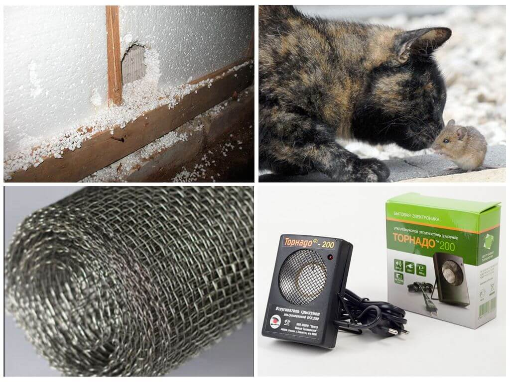 Что нужно делать, чтобы не было мышей в деревянном доме