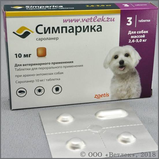 Симпарика для собак: показания и инструкция по применению, отзывы, цена