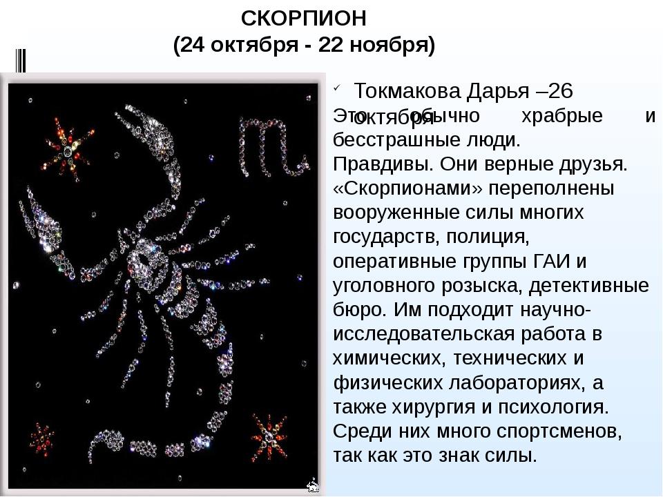 Скорпионница образ жизни и строение тела необычных насекомых