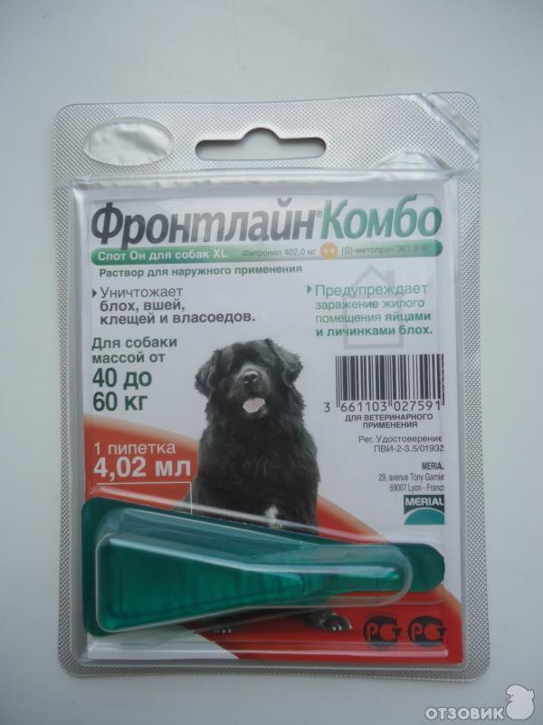 Ванилин с водкой от клещей: средство для собак и людей