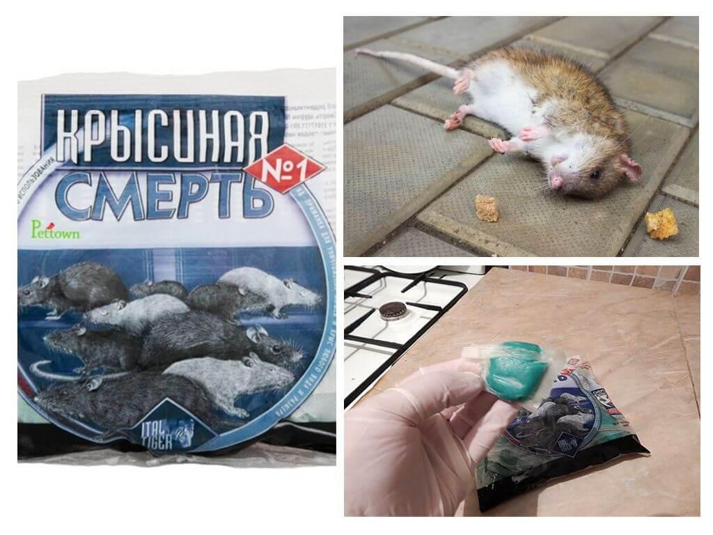 Яды для крыс и мышей