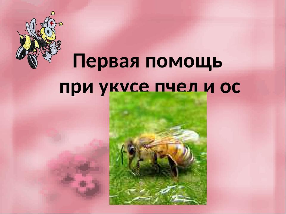 Ужалила пчела. как снять боль, опухоль и отек? как избавиться от последствий укуса пчелы?