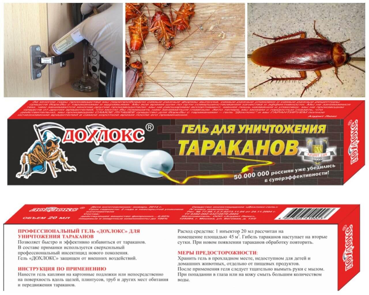 Применение средств дохлокс от тараканов