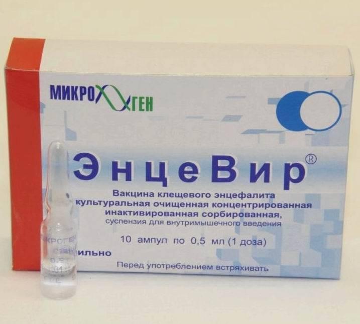 Стоит ли ставить прививку от клещевого энцефалита? | плюсы и минусы