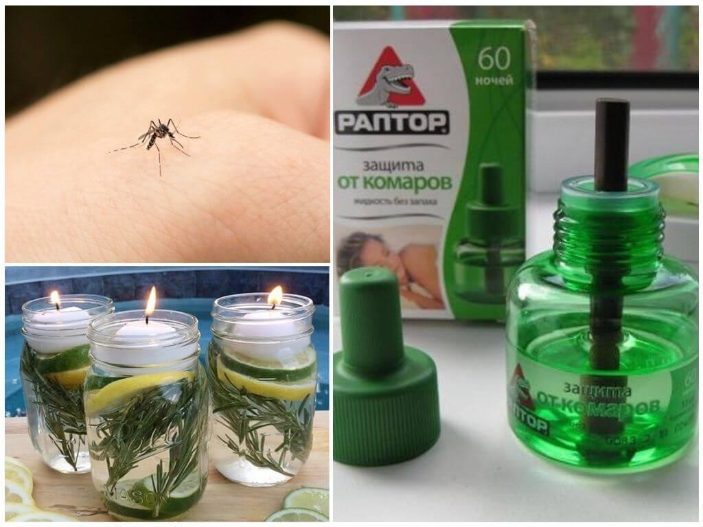 Принцип действия и эффективность фумигаторов от насекомых