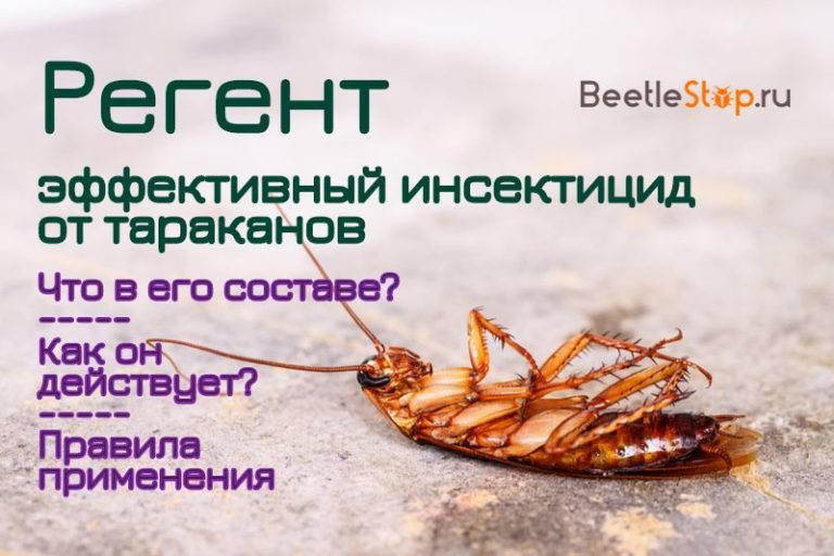 Средство регент от тараканов