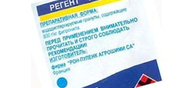 Регент от тараканов: состав, действие и применение