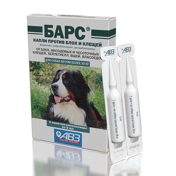 Защита собаки от клещей и комаров