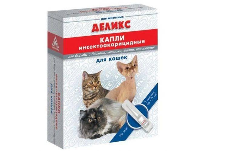 Капли ирис для кошек и котов: инструкция по применению, цена, отзывы