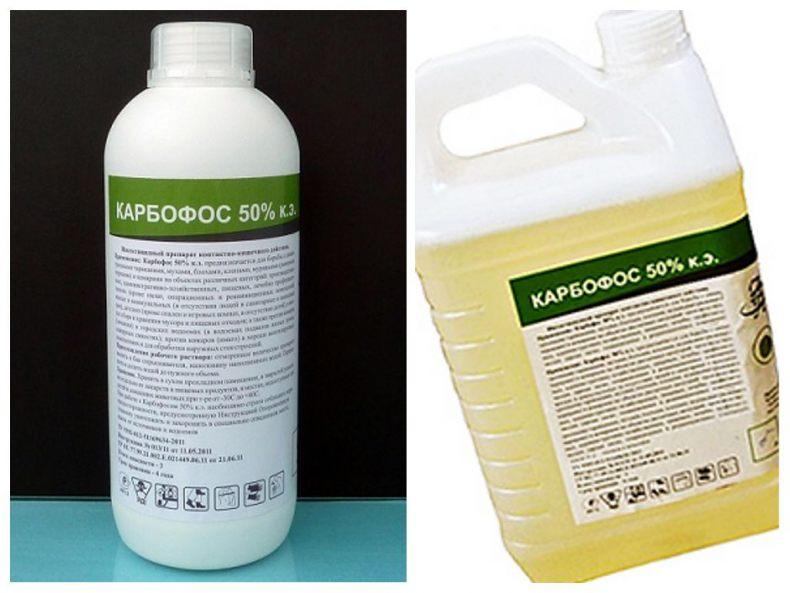 Карбофос: инструкция по применению, отзывы, хранение препарата