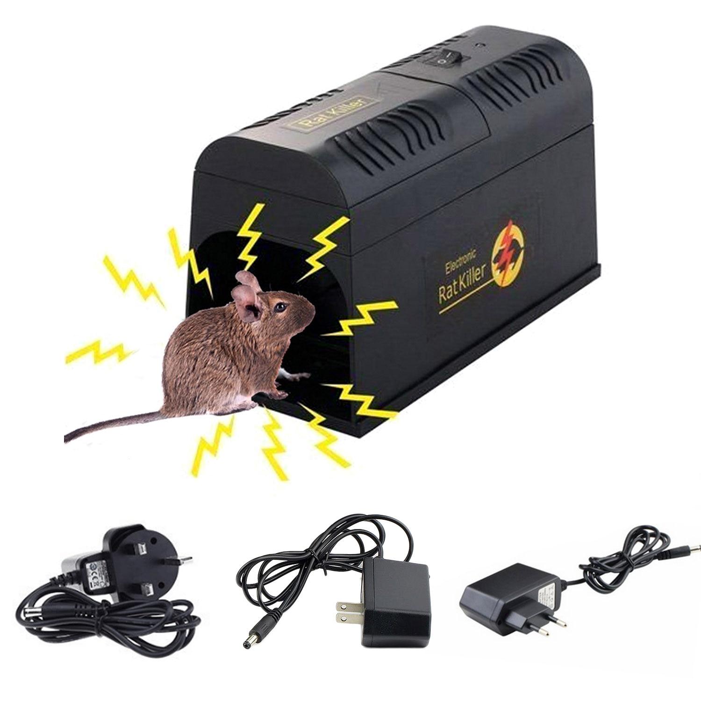 Чего боятся мыши, чем их отпугивать в доме и квартире