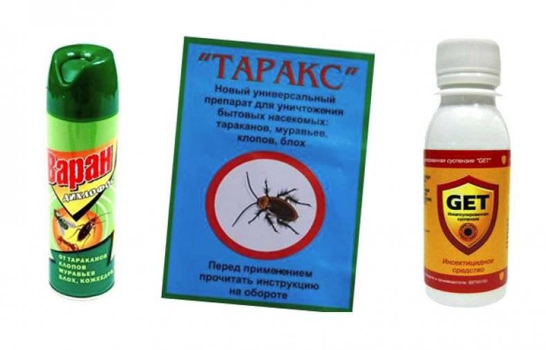 """Мокрицы в квартире: как избавиться от """"насекомых"""", какими средствами бороться в домашних условиях, чтобы вывести самостоятельно, а также причины появления, фото selo.guru — интернет портал о сельском хозяйстве"""
