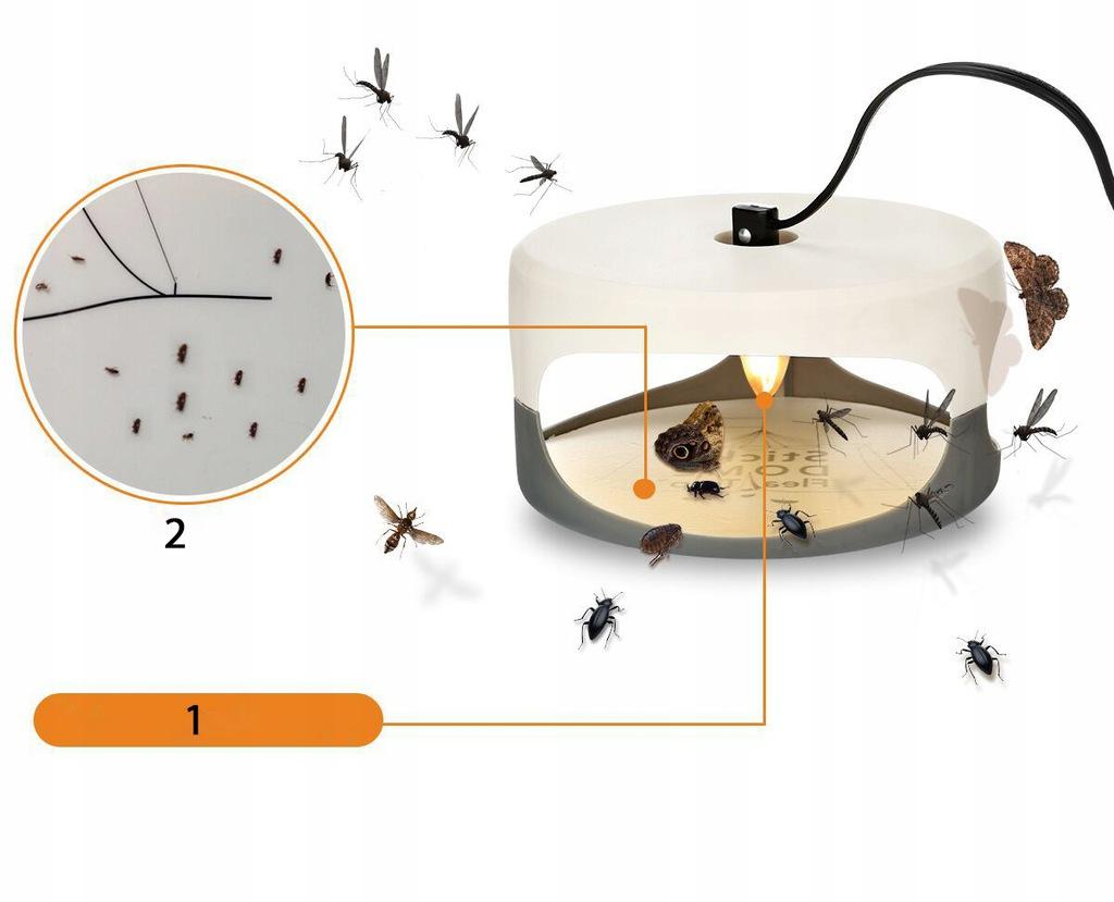 10 способов избавления ваших питомцев от блох :: инфониак