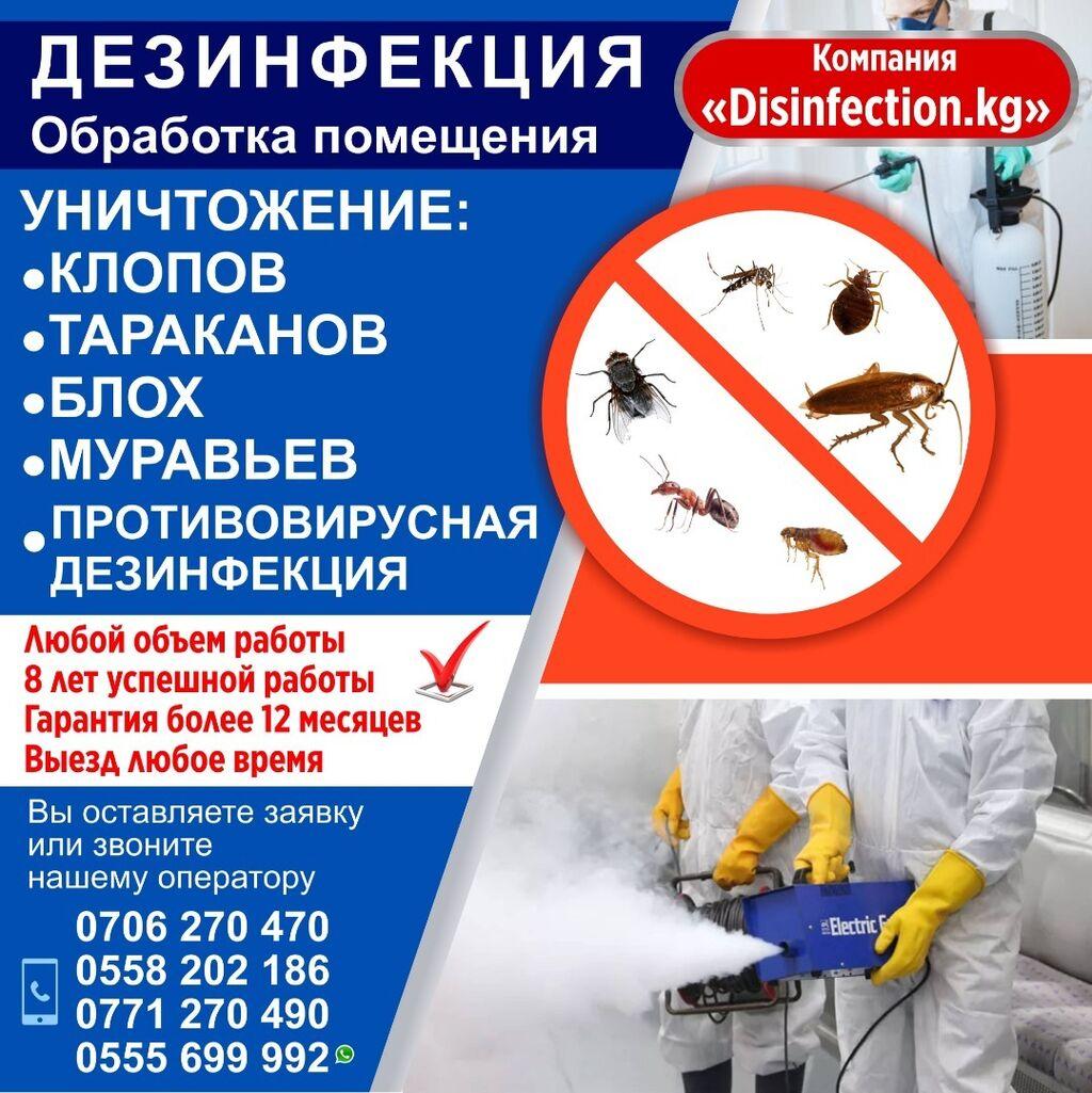 Препараты для дезинсекции — обзор хороших средств от насекомых