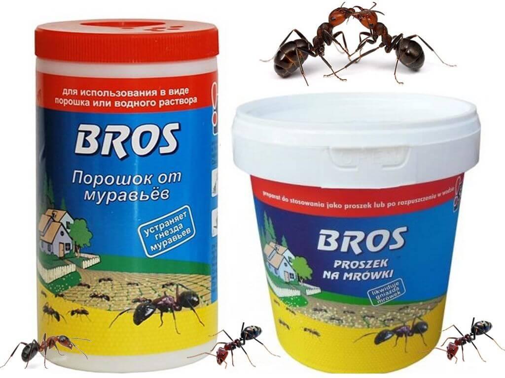 Топ-15 лучших средств от садовых муравьев: как избавиться раз и навсегда