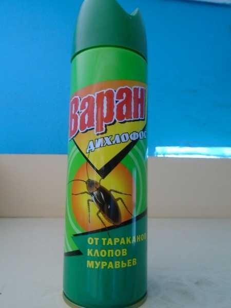 Дихлофос от тараканов: инструкция по применению, отзывы