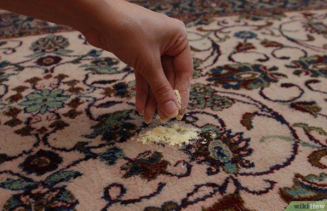 Половые блохи в доме: как избавиться, чем помыть полы и обработать ковер