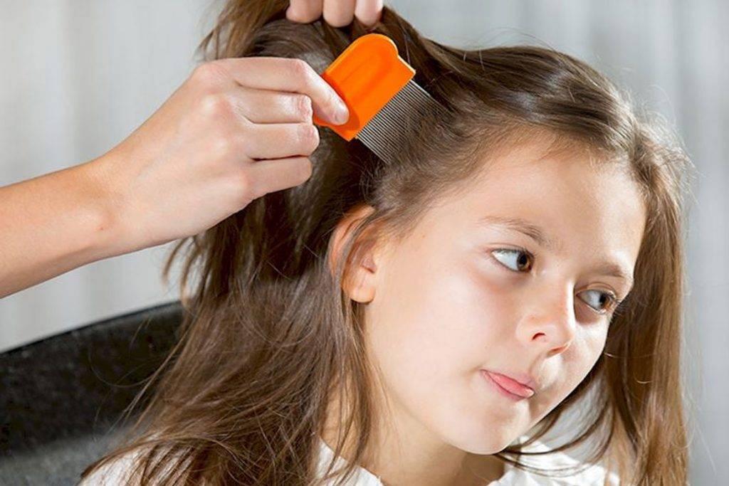 Вши у ребенка что делать: лечение, выбор подходящего средства