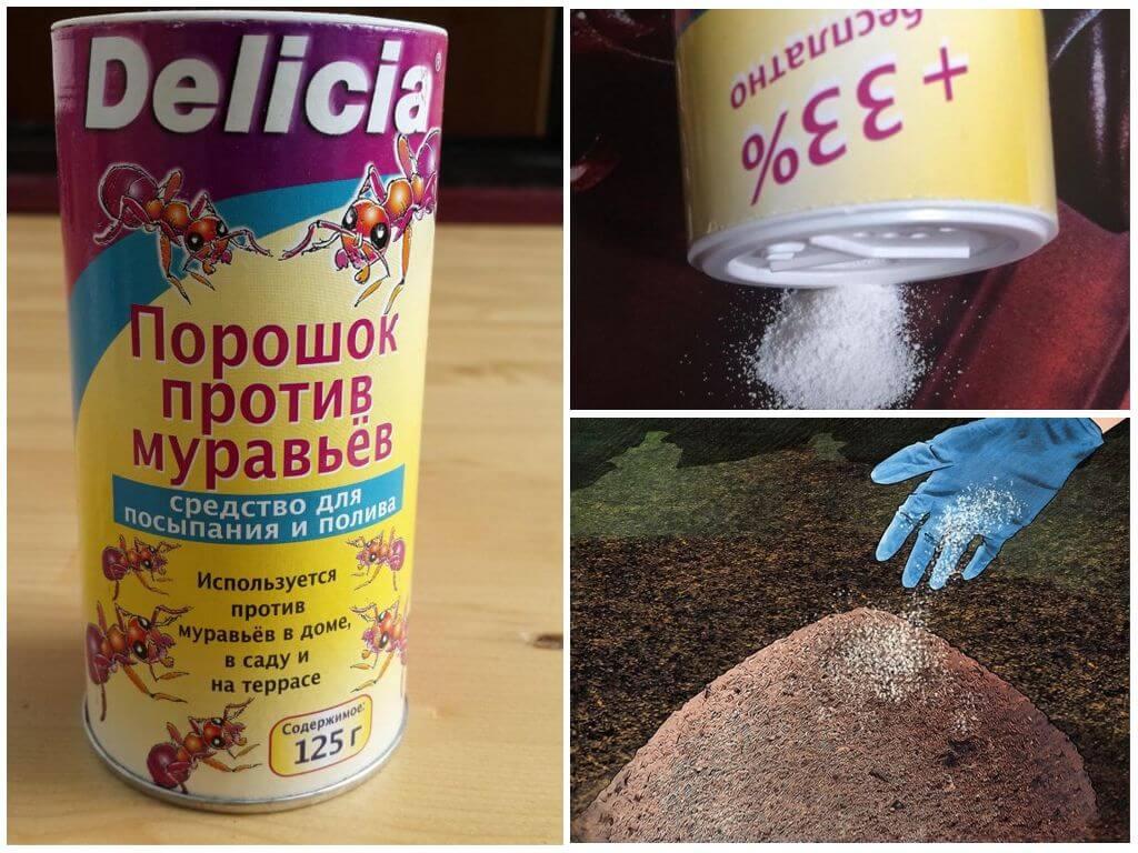 Порошок делиция от муравьев: отзывы и инструкция