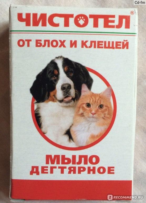 Как с помощью дегтярного мыла вывести блох у кошек и собак
