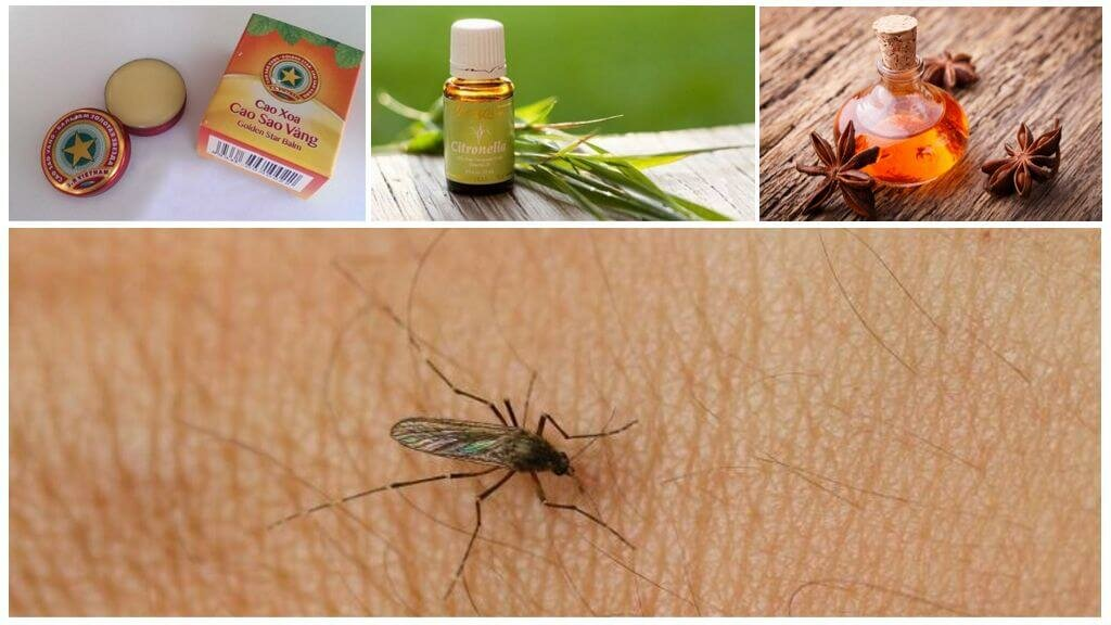 Как избавиться от комаров в квартире - эффективные способы отпугивания насекомых