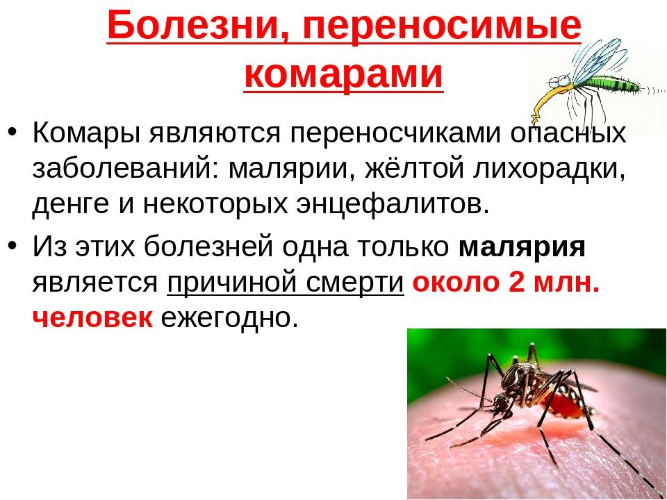 Чем опасны тараканы нужно знать каждому, чтобы была мотивация к их истреблению!
