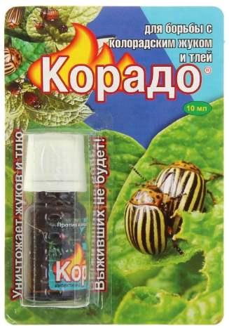10 мощных средств от колорадского жука на картошке