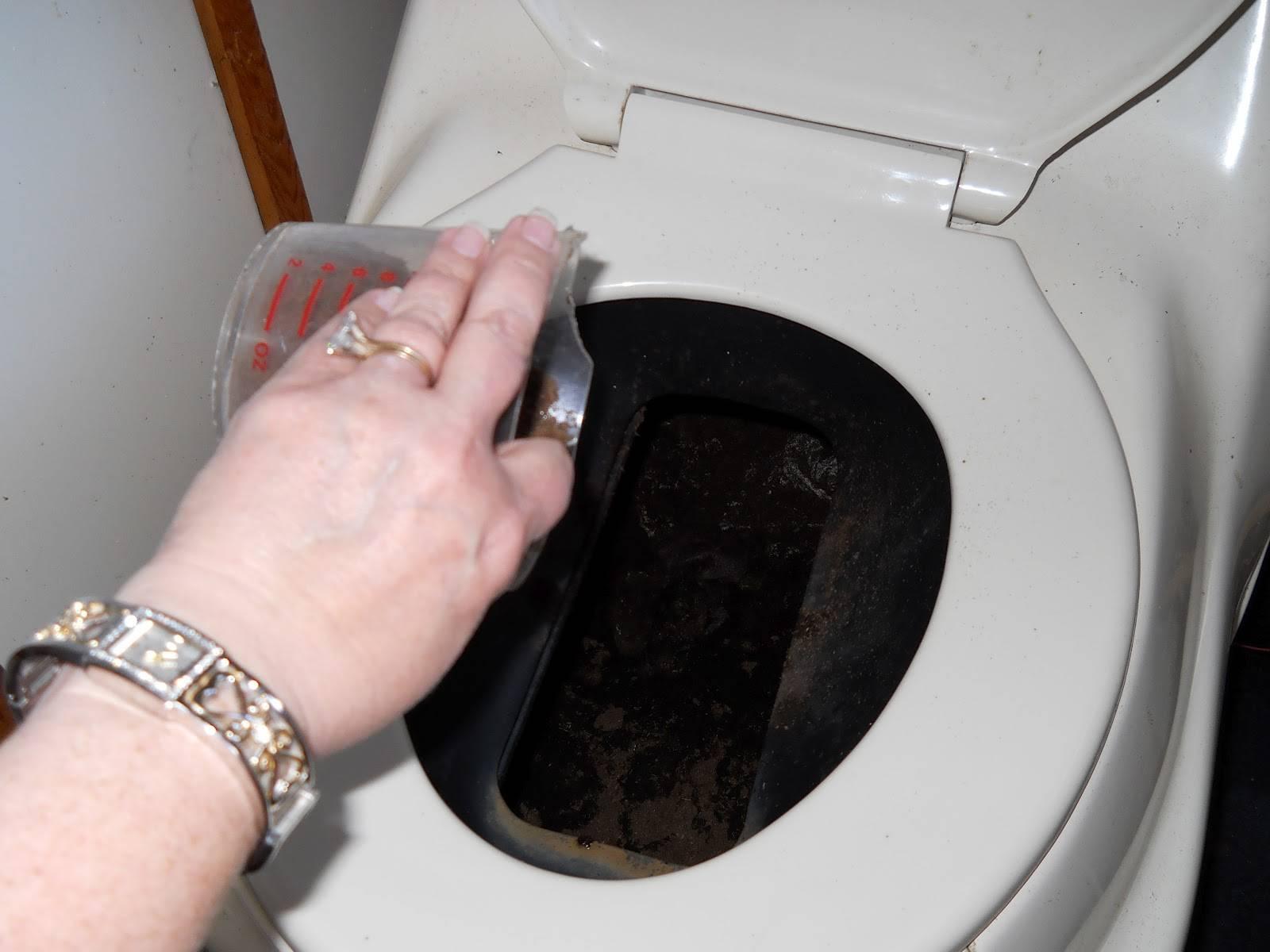 Как избавиться от мух в дачном или уличном туалете: применение химических средств, клейкой ленты