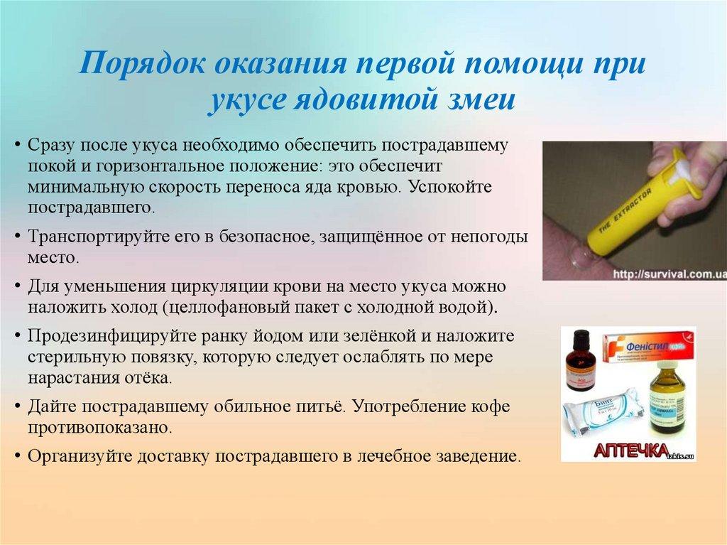 Укус шершня и его последствия: лечение в домашних условиях